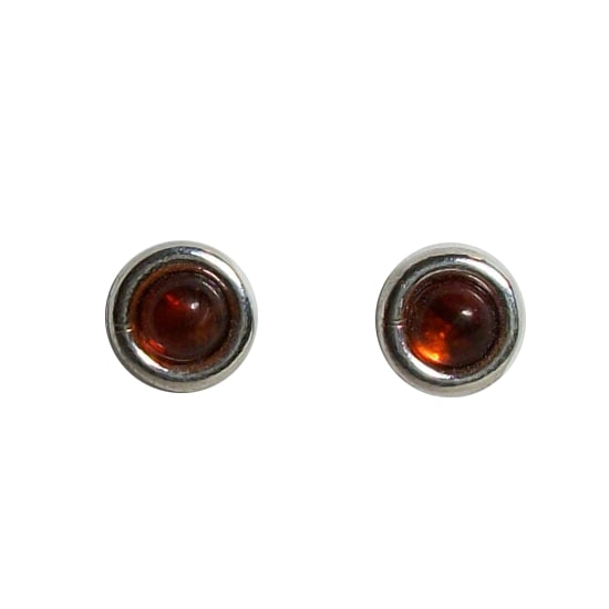 Studs in Baltic Amber