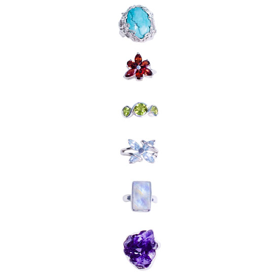 Variety 6 Ring Assortments